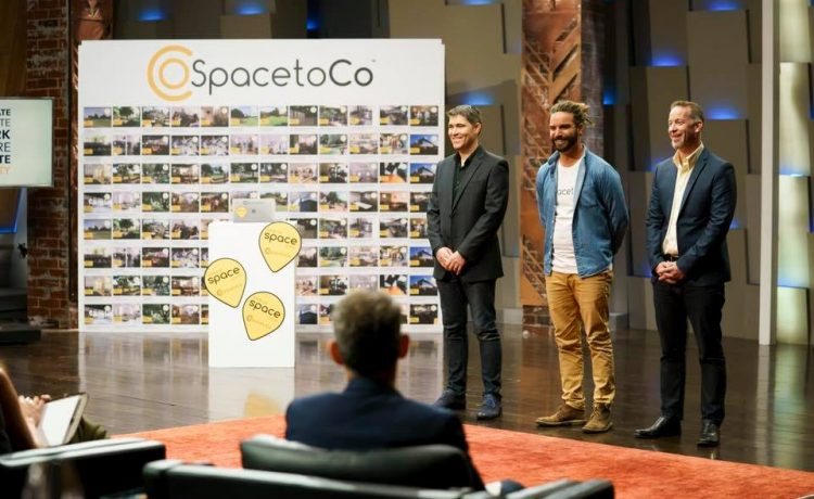 SpacetoCo went Swimming with Sharks – and Survived