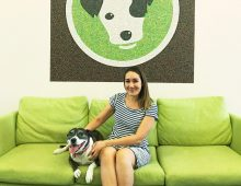 PetRescue appoints new GM