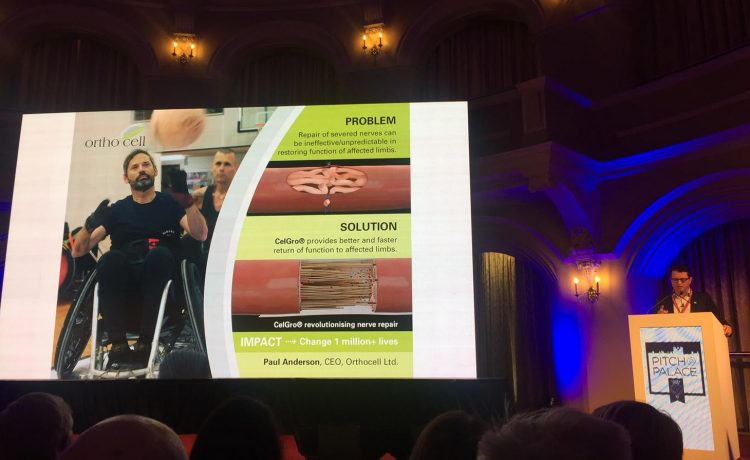 WA's Orthocell wins a place in Global Pitch@Palace finals