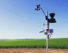 Agtech startup Origo Farm wins $375K Accelerating Commercialisation grant